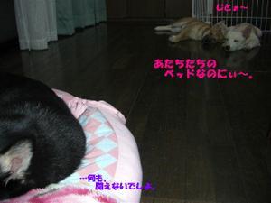 H201016_173_r